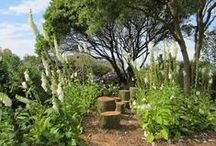 HRW Garden Design / My designs and photography unless otherwise stated.