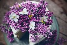 purple {wedding inspiration} / purple wedding floral design & inspiration