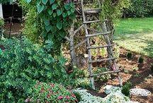 natural gardens / 世界中の庭・家の周りを緑と花でいっぱいに