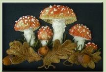 mushrooms & lichens