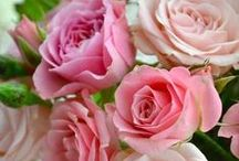 ~*Roses*~ /  ~ Every rose has its thorn ~