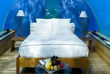 Exotic beds! / Amazing and over the top bedrooms!