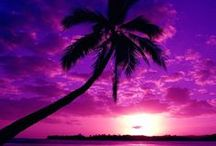 Sunsets/rises - Pink/Purple / by Carlos Sathler