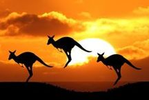Travel to Australia, New Zealand + South Pacific / Information on traveling Down Under and to the South Pacific