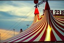 Meyer Circus