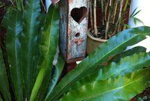 Bird house / Rustic Bird Houses