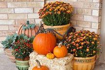 DEKORACE podzimní