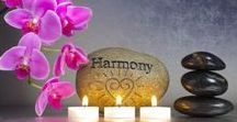 ZEN - harmónia relax