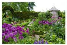 Garden: Modern Country / Delicious inspiration for my blog, Modern Country Style / by Modern Country Style by Sarah
