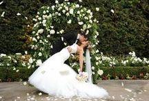 MY Special Wedding Day<3 / by Sam Chilinski