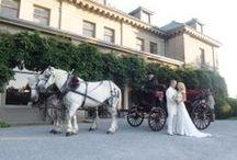 Eolia Mansion @ Harkness / Weddings catered at Eolia- The Mansion at Harkness Memorial State Park  275 Great Neck Rd Waterford, CT