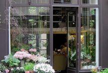 Bloemen / shops / by Carla Groenenboom