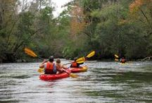 Trailahassee / No matter if you prefer hiking, biking, or calm nature trails, Tallahassee has it all! Use Trailahassee.com to find the perfect spot for your next outdoor adventure.