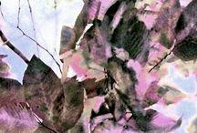 Natural World Inspo / by KDHS Loves Art