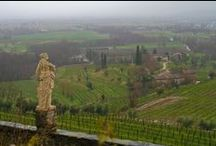 Friuli–Venezia Giulia, Italy - the food, the wine, the scenery / Travel to Friuli–Venezia Giulia, Italy