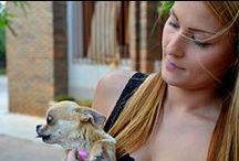 PERROS / Every funny or interesting dog photo I found!! / Fotos interesantes o divertidas de perros.