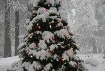 Weihnachten | Deko & Basteln