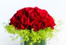 Best Valentine's Day Flowers for 2015 / Have confidence that you're sending a unique, quality gift handcrafted for your Valentine. Make this Valentine's Day the best one yet: http://bloompop.com/easy-valentines