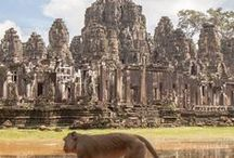 Cambodia ❋  our itinerary ——»