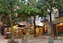 El restaurant / La Font de Prades es el restaurante con más tradición del Poble Espanyol, con más de 40 años de experiencia. Nuestros comedores de ambiente rústico y acogedor les sorprenderan porque se adaptan a cualquier evento que quieran realizar