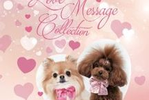 For Pets Only collezione primavera estate 2015 / Love Message Collection