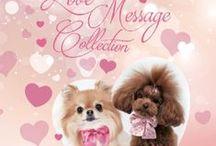 For Pets Only collezione primavera estate 2015 / Love Message Collection
