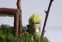 Miniature gardens / by Kat