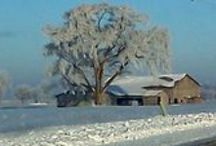 Winter in Ohio / by Debra Caudill Foster