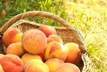 Farmer Penelope's Peach Orchard / A peachy, peach country life.  / by Barbara Wedderman