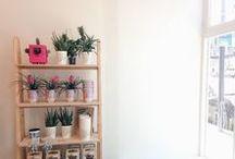 Plantbutler / shop