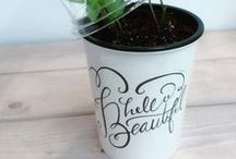 Plantbutler / kitchen