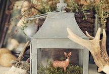 Woodland Lodge / Decor ideas along the woodland and lodge theme.