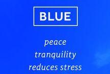 Chowan Blue / All things Chowan blue