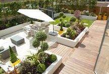 Landscaped gardens / Providing the perfect extension to your home, these gardens make the most of light and space to offer the ideal place to relax and enjoy the sunshine.