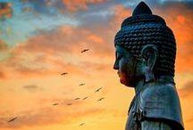 Reflexões de Buda