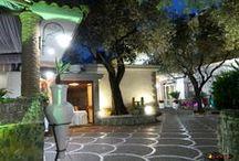 Hotel Degli Ulivi - Gragnano,Italy / A Vezúvtól az Amalfi partokig / körutazás /