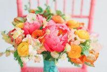 fleurs corail-pamplemousse