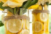 fleurs citron