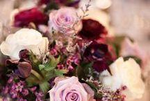 fleurs rouge-cerise-bordeau-rubis