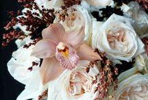 fleurs marron-chocolat