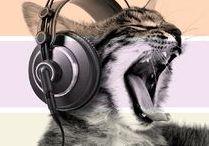 Prodotti LindoCat / Quali lettiere usi per il tuo gatto? Scegli solo le migliori: Lindocat, lettiere agglomeranti ed assorbenti al top delle performance!