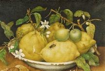 Marguerite Citron