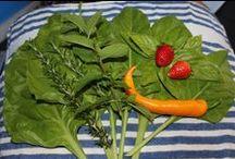 Edible Garden / Experience Allure's fantastic edible garden with some delicious home cooking!