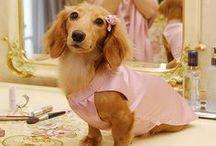 Pretty in Pink / www.jewelleryworld.com