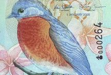 """Banknotes We Love / Send an email to info@kollectbox.com if you wish to share your banknotes on """"Banknotes we love"""""""