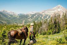 Horse treks