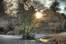 ❄ BEAUTIFUL WINTER ❄ / winter