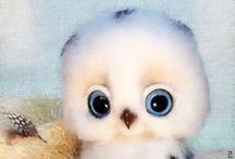 (͡๏̯͡๏) OWLs (͡๏̯͡๏)