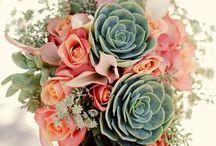 Flowers @---