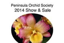 Peninsula Orchid Society Show 2014 / Orchid Shows Brookside Orchids will be attending.